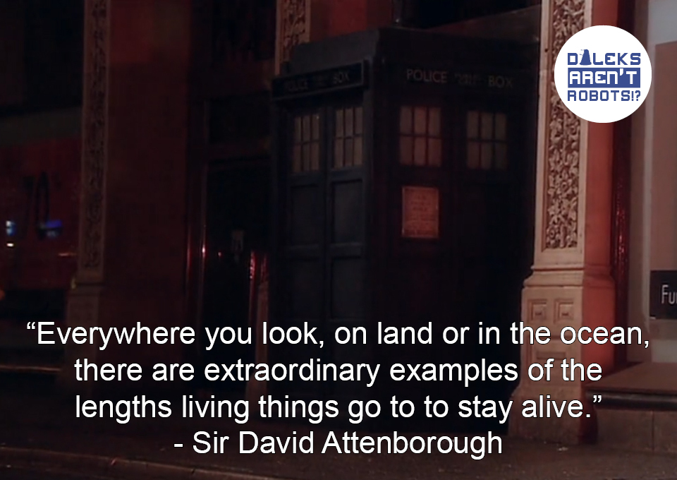 """(Image of Tardis peeking out from an alleyway) """"Everywhere you look, on land or in the ocean, there are extraordinary examples of the lengths living things go to to stay alive."""" - Sir David Attenborough"""