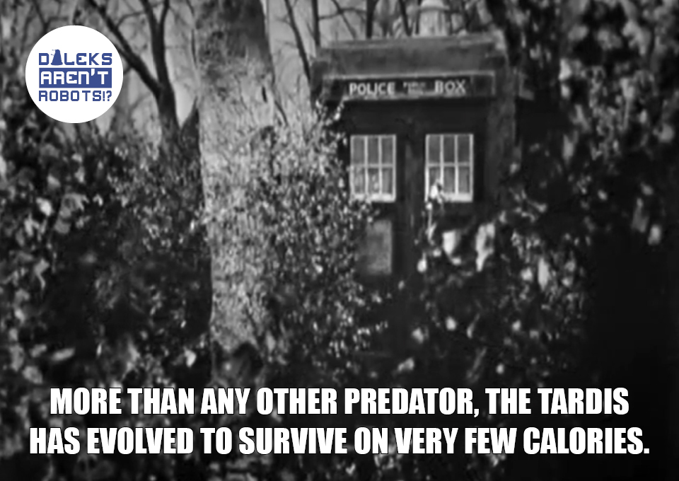 (Image of the Tardis partially concealed by foliage) More than any other predator, the Tardis has evolved to survive on very few calories.